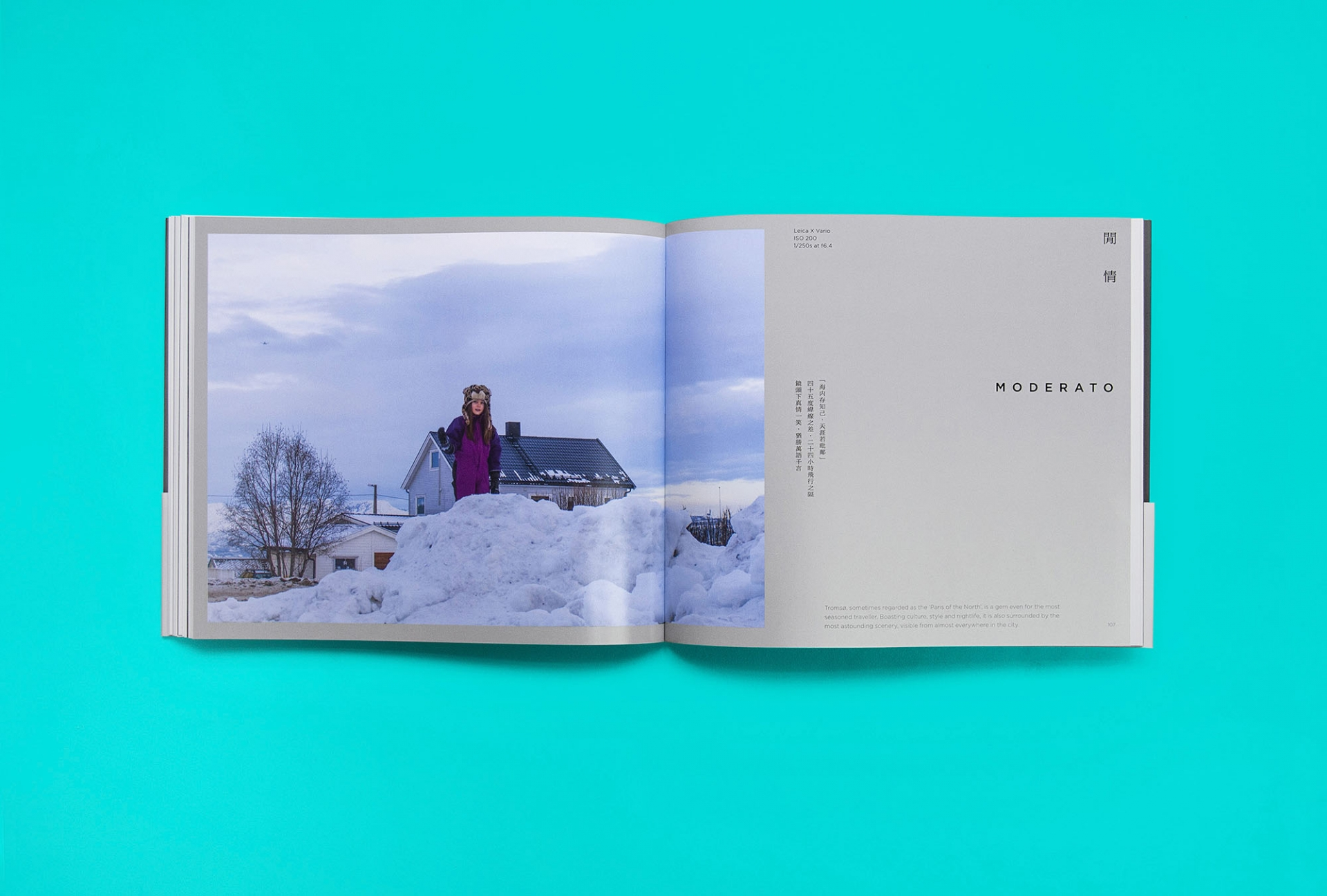 Good Morning Design In Search of the Northern Lights